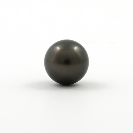 Pearl of Tahiti 13.2mm Round B